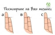 Оказывается, длина ваших пальцев влияет на ваш характер!