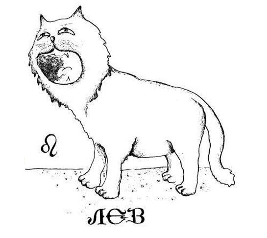 Знак зодиака лев картинки прикольные