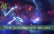 Звезды—живые разумные существа. Часть 1