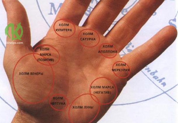 Что означают холмы на руке