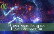 Звезды—живые разумные существа. Часть 5.