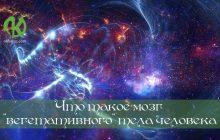 Звезды—живые разумные существа. Часть 6.