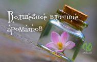 Магические свойства эфирных масел — волшебное влияние ароматов