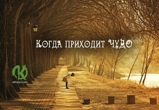 Сказка: Когда приходит чудо