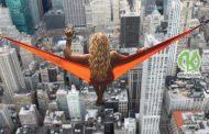 5 мифов стабильности в жизни